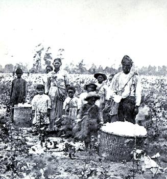 Escravos em campos de algodão nos Estados Unidos